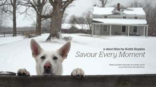 Savour Every Moment - Director's Cut